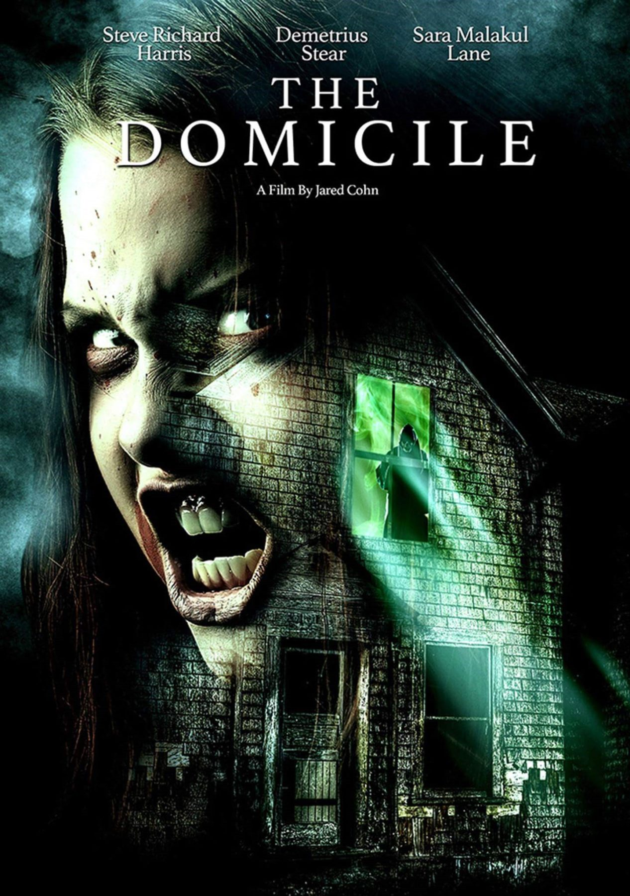 Movie Review - The Domicile (8)