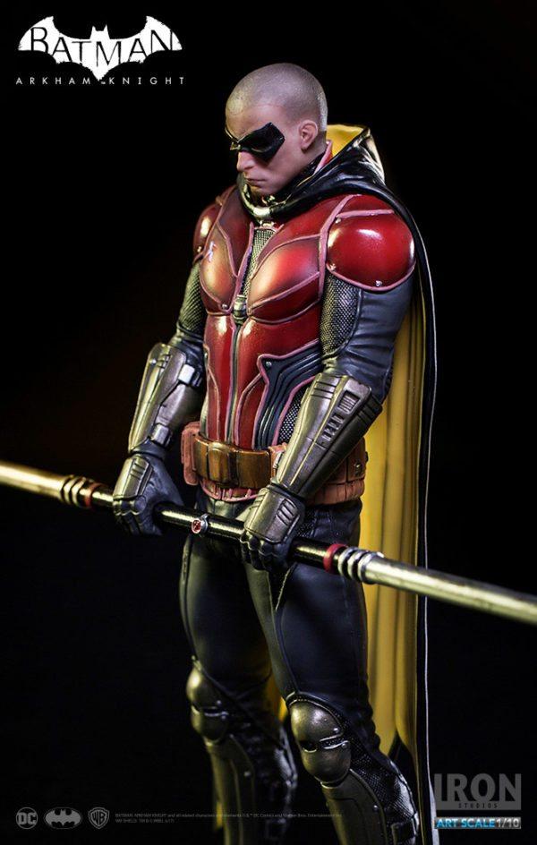 Robin-3-600x944