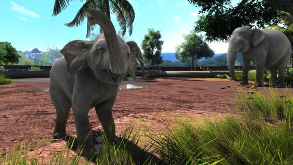 Zoo Tycoon: Ultimate Animal Collection coming to the Xbox One family