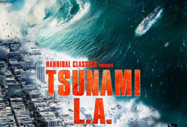 tsunamila-1-600x410.jpg