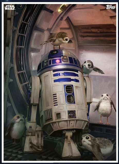 Star-Wars-The-Last-Jedi-14