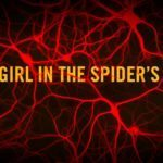 The Square's Claes Bang cast as villain in The Girl in the Spider's Web