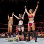 WWE Raw Review 27/11/17 – Roman Reigns Walks With Elias, Paige's Motives Revealed, Matt Hardy Beginning to Break?