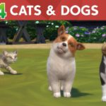 Dogs rule and cats drool in the latest expansion for The Sims 4 PLUS news for Xbox One and PS4 owners