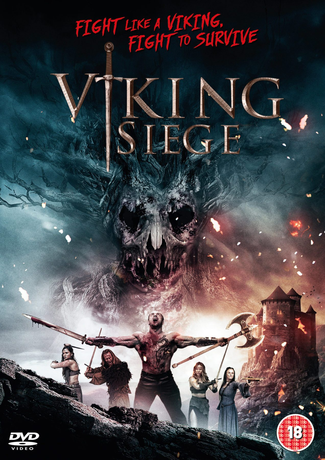 dvd review viking siege 2017. Black Bedroom Furniture Sets. Home Design Ideas