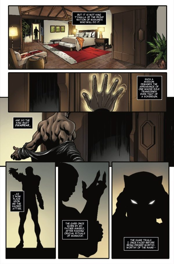 sound fury presentation Black panther: the sound and the fury #1 is a decent read for a young and new black panther fan, but it offers little to anyone with some experience with tchalla its not bad, but its not good either.