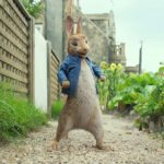 Sony sets Peter Rabbit 2 for 2020