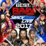 DVD Review – WWE: The Best of Raw and SmackDown 2017