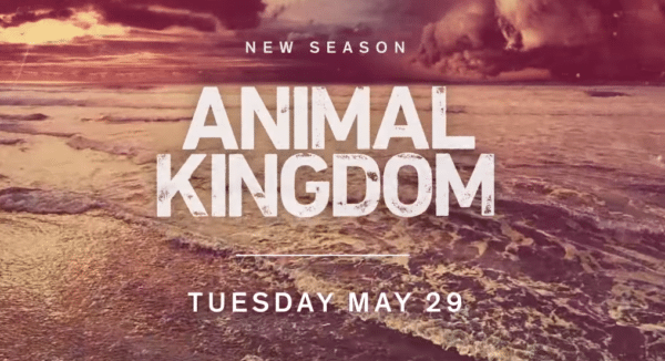 Animal-Kingdom-logo-600x326