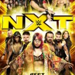 DVD Review – WWE: Best of NXT 2017