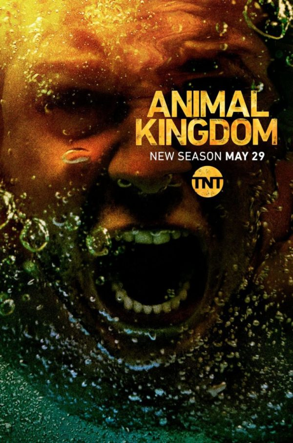 Animal Kingdom 3x02 Espa&ntildeol Disponible