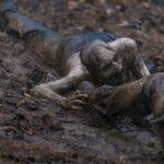 The-Walking-Dead-815-4-150x150