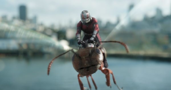 Ant-Man-and-the-Wasp-images-9-600x316