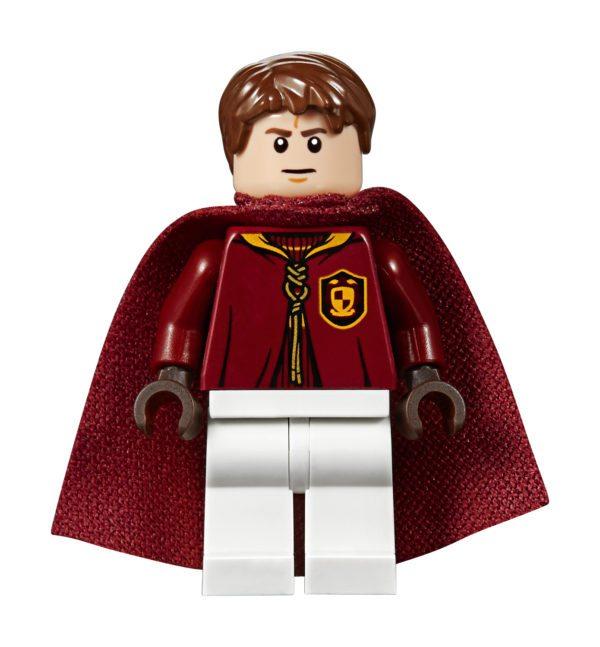 LEGO Harry Potter Hogwarts Express, Quidditch Match and ...