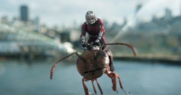 Ant-Man-3-600x316