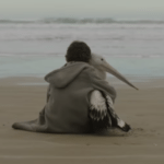 Watch the trailer for Storm Boy starring Jai Courtney and Geoffrey Rush