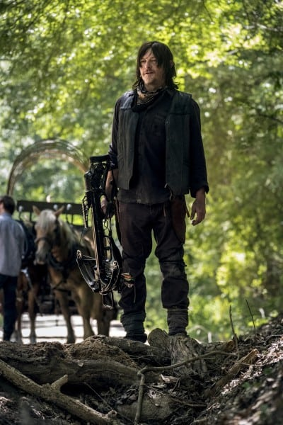 The-Walking-Dead-s9-images-2