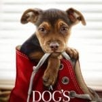 Movie Review – A Dog's Way Home (2019)