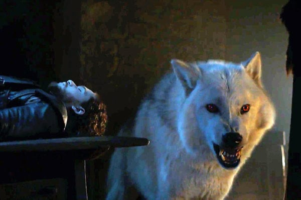 Jon Snow's direwolf Ghost will be