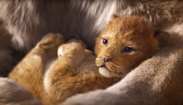 Lion-King-teaser-Simba-600x345