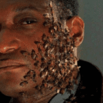 Jordan Peele-produced Candyman sequel gets 2020 release date