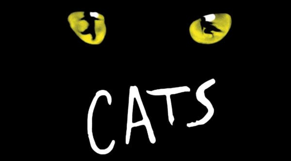 cats-600x332