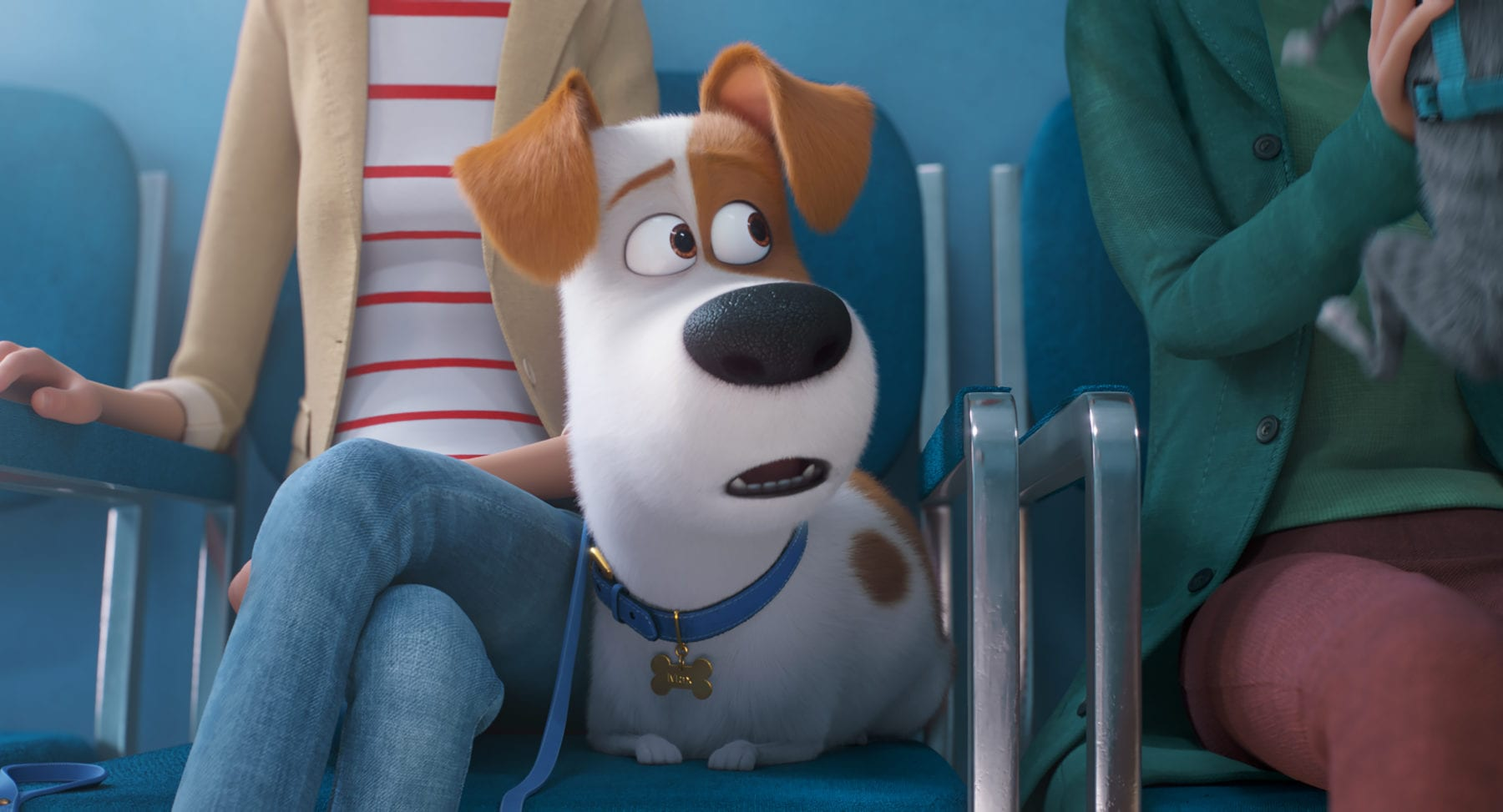 Movie Review - The Secret Life of Pets 2 (2019)