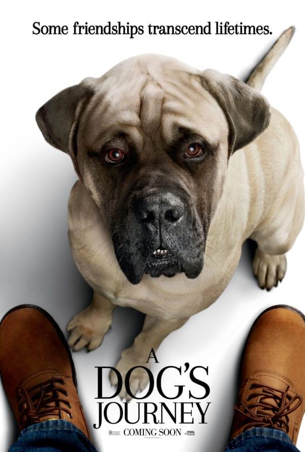 A-DOGS-JOURNEY-Big-Dog-600x889