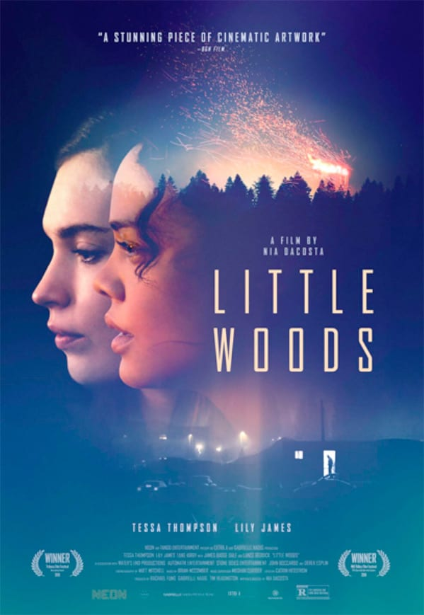 Tessa Thompson and Lily James star in trailer for crime drama Little Woods
