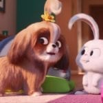 The Secret Life of Pets 2 trailer introduces Tiffany Haddish's Daisy the Shih Tzu