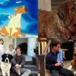 Man's Best Friend: The Top 10 Dog Movies