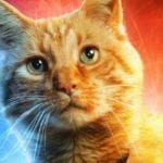 Captain Marvel gets a Goose the Cat promo and new TV spots