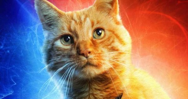 Captain-Marvel-Early-Screen-Reactions-Goose-Cat-600x316