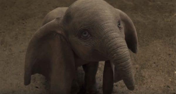 Dumbo-TV-spot1-600x322
