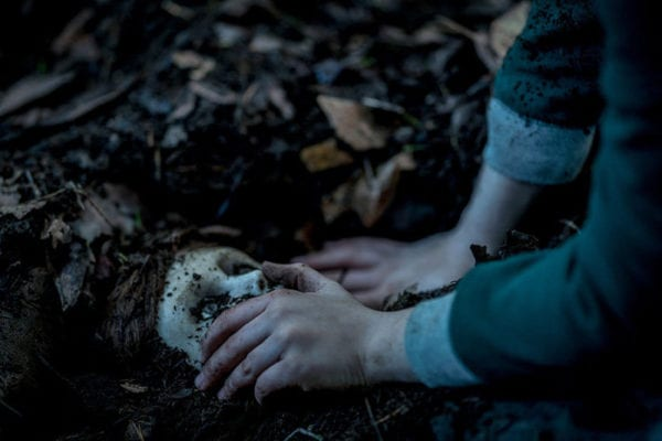 Brahms is back in first look image from The Boy 2