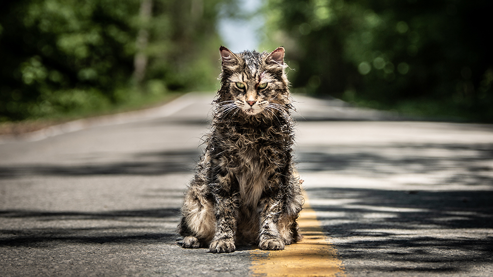 Sometimes Dead Is Better: Reviewing Pet Sematary (1989), Pet Sematary Two (1992) and Pet Sematary (2019)