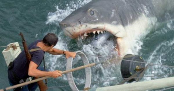 Jaws-Rerelease-Cgi-Shark-Richard-Dreyfuss-Wishes-600x316