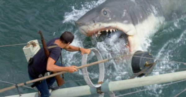jaws-horror-600x314