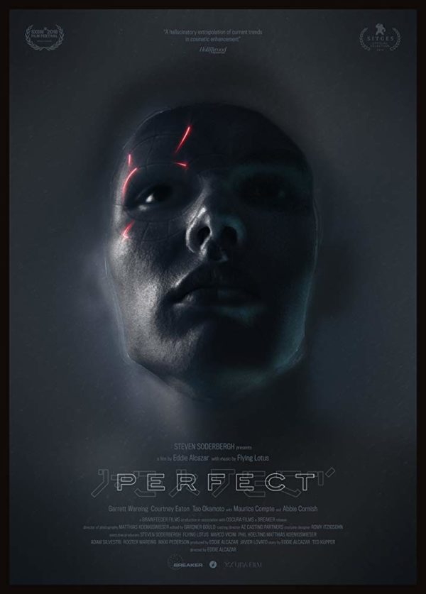 Perfect-poster-600x837