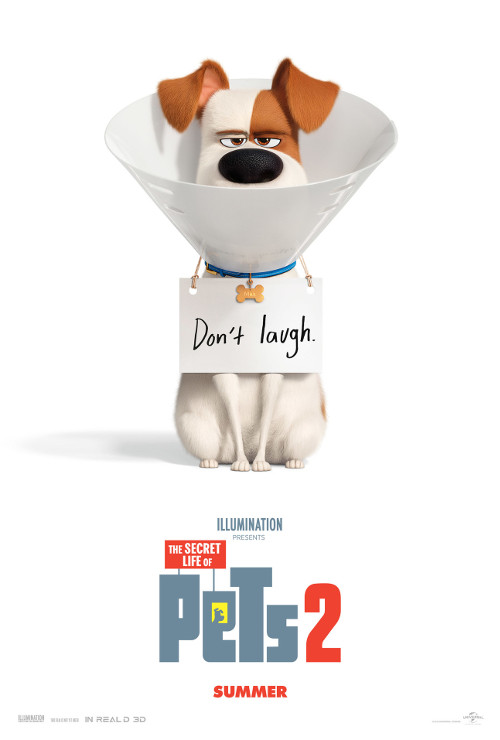 Movie Review – The Secret Life of Pets 2 (2019)