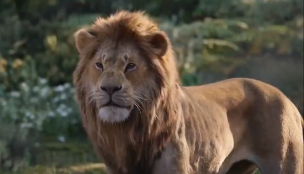 Simba Confronts Scar In The Lion King Tv Spot