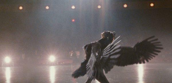 Black-Swan-1-600x291