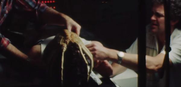 Memory_-The-Origins-of-Alien-Official-Trailer-0-27-screenshot-600x290
