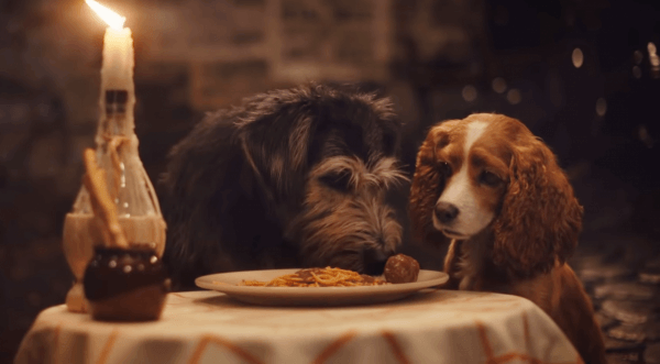 Disney's live-action Lady and the Tramp movie gets a new trailer