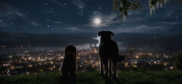 Lady-and-the-Tramp-images-1-600x279
