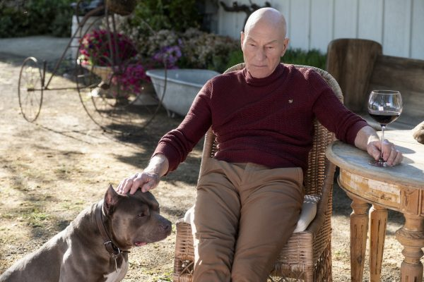 star-trek-picard-admiral-patrick-stewart-interview-jeri-ryan-seven-of-nine-de-niro-pitbull-cbs-all-access-amazon-prime-600x400