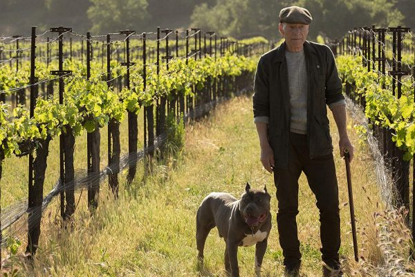 star-trek-picard-patrick-stewart-interview-de-niro-number-one-dog-wine-vineyard-chateau-picard-600x400