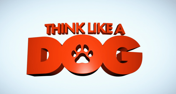 Think-Like-A-Dog-2020-Movie-Official-Trailer-Josh-Duhamel-Megan-Fox-1-42-screenshot-600x322