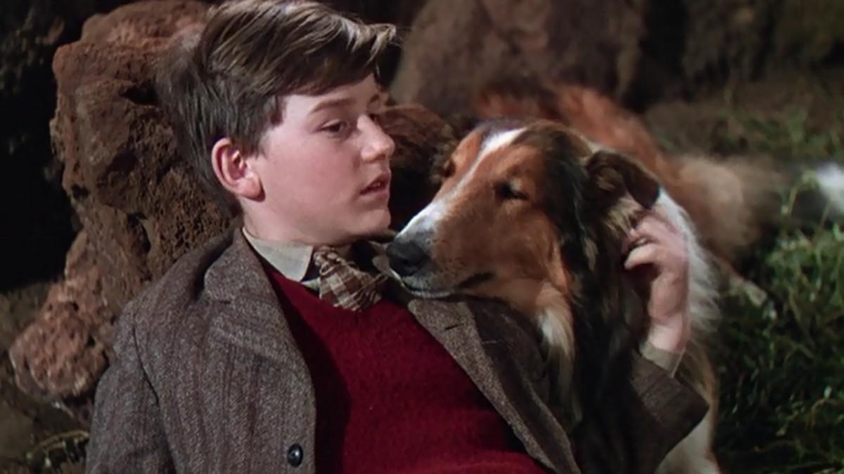 lassie come home.'