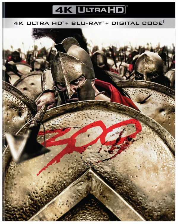 300-4K-600x752